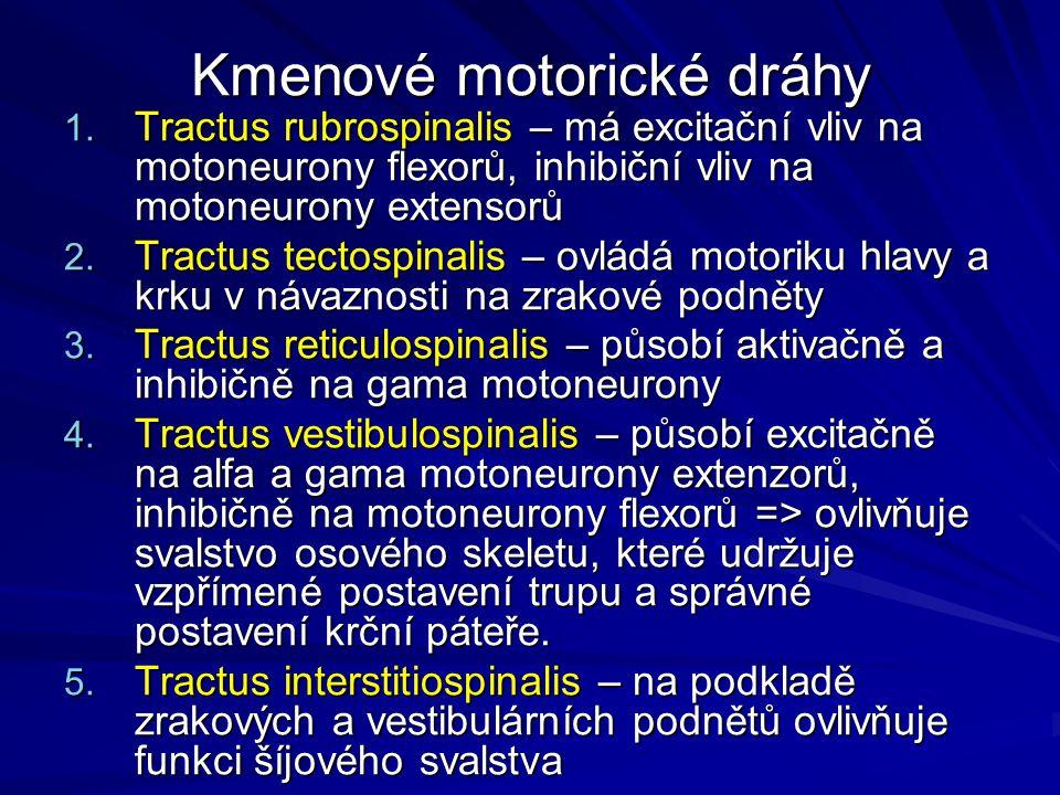 Kmenové motorické dráhy 1. Tractus rubrospinalis – má excitační vliv na motoneurony flexorů, inhibiční vliv na motoneurony extensorů 2. Tractus tectos