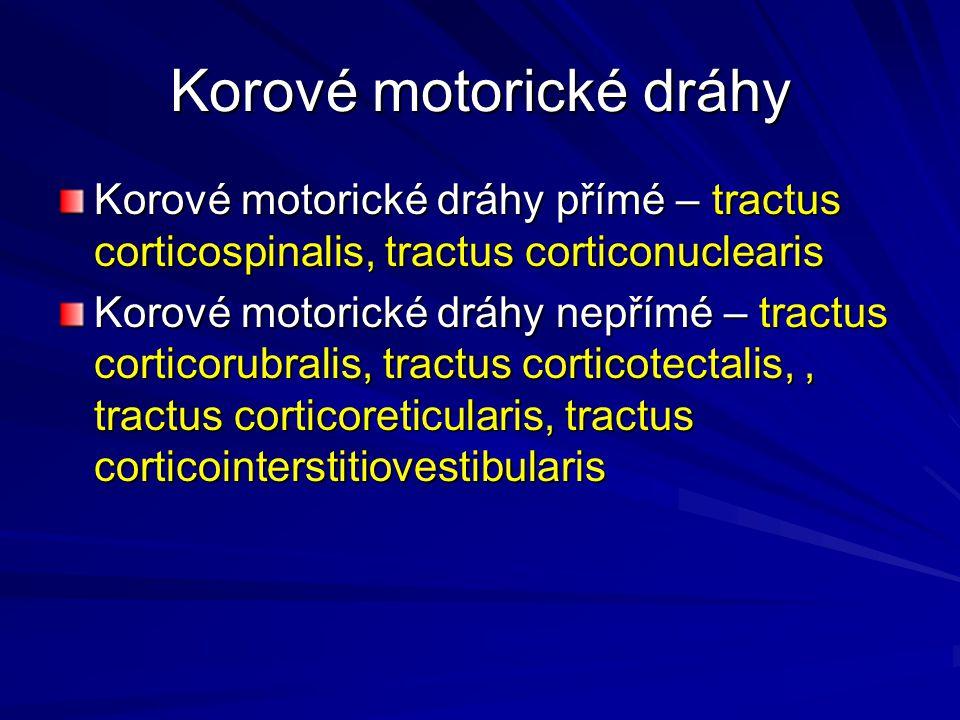 Korové motorické dráhy Korové motorické dráhy přímé – tractus corticospinalis, tractus corticonuclearis Korové motorické dráhy nepřímé – tractus corti