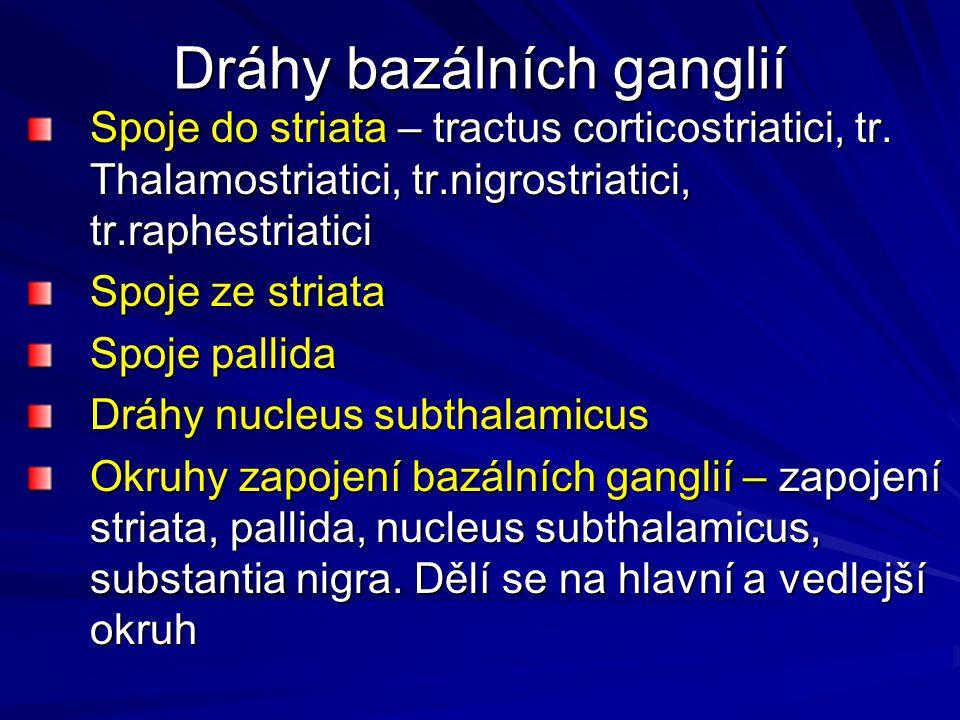 Dráhy bazálních ganglií Spoje do striata – tractus corticostriatici, tr. Thalamostriatici, tr.nigrostriatici, tr.raphestriatici Spoje ze striata Spoje