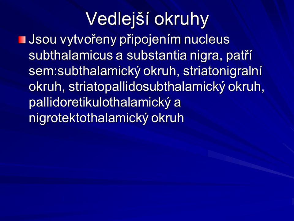 Vedlejší okruhy Jsou vytvořeny připojením nucleus subthalamicus a substantia nigra, patří sem:subthalamický okruh, striatonigralní okruh, striatopalli