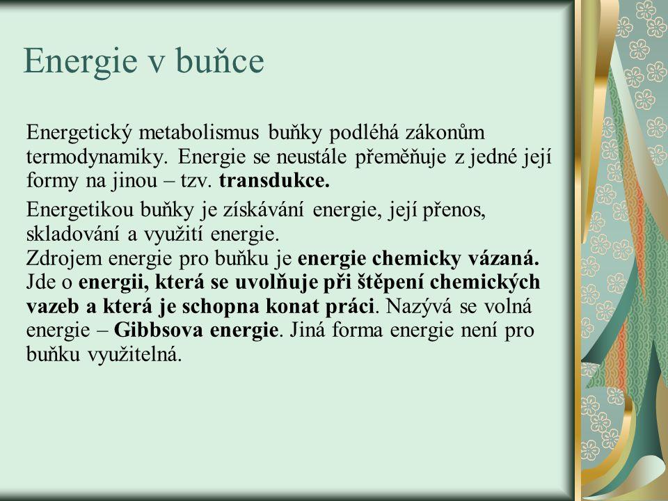 Energie v buňce Energetický metabolismus buňky podléhá zákonům termodynamiky. Energie se neustále přeměňuje z jedné její formy na jinou – tzv. transdu