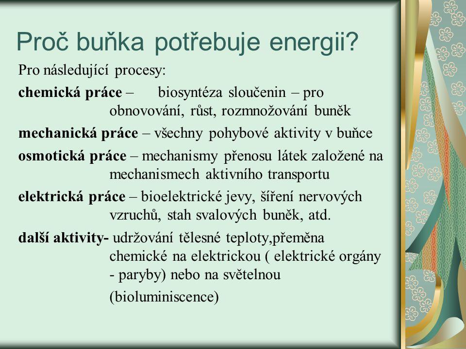 Proč buňka potřebuje energii? Pro následující procesy: chemická práce – biosyntéza sloučenin – pro obnovování, růst, rozmnožování buněk mechanická prá
