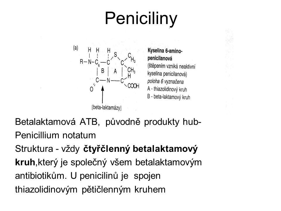Peniciliny Mechanismus účinku – inhibice tvorby buněčné stěny - vazba na PBP (penicilin binding protein, což jsou nosiči enzymů transpeptidázy, transglykosidázy a karboxypeptidázy, které jsou zodpovědné za syntézu peptidoglykanu (součást bakteriální stěny), vazba na PBP irreverzibilní, účinek baktericidní nejpoužívanější antibiotika baktericidní, rychlý nástup účinku, krátký postantibiotický efekt, netoxická