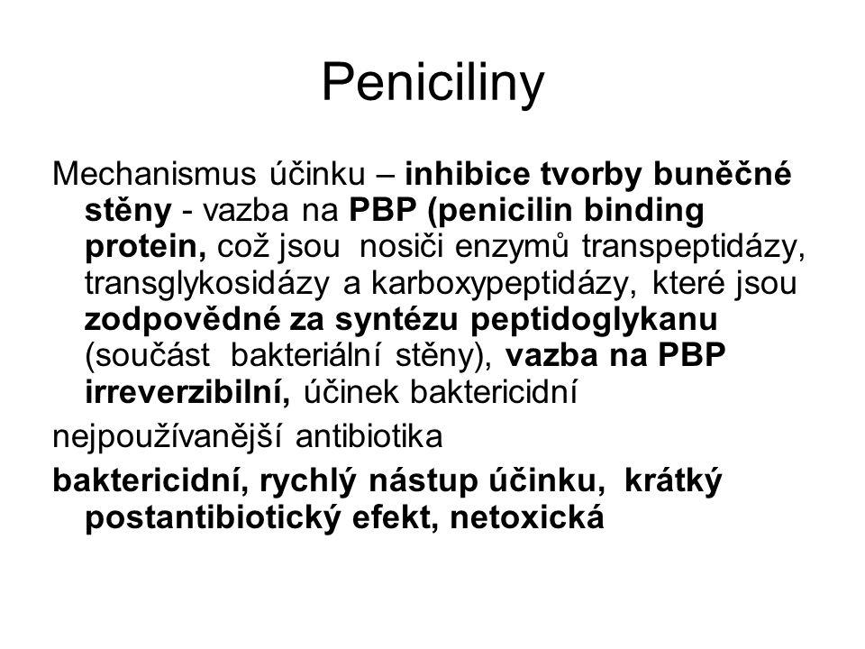Peniciliny Mechanismus účinku – inhibice tvorby buněčné stěny - vazba na PBP (penicilin binding protein, což jsou nosiči enzymů transpeptidázy, transg