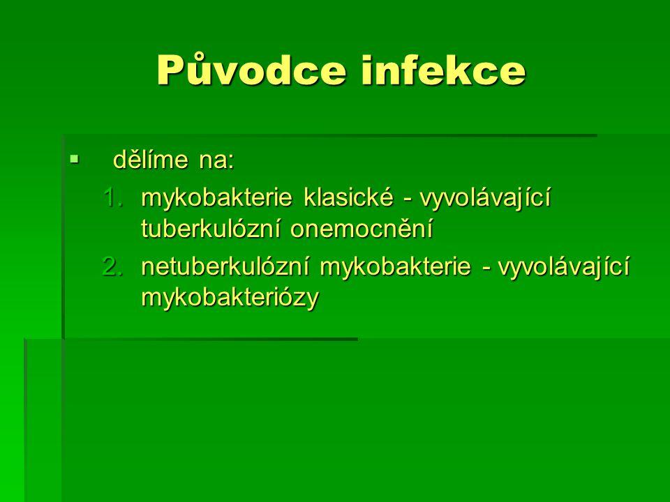 Původce infekce  Ke klasickým mykobakteriím řadíme: 1.Mycobacterium tuberculosis – patogenní pro člověka, nejčastější výskyt 2.Mycobacterium africanum – vyskytuje se převážně v tropické Africe, v Evropě zcela výjimečně, patogenní pro člověka 3.Mycobacterium bovis – patogenní pro skot i pro člověka