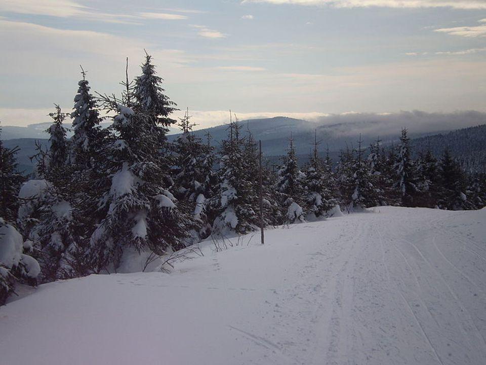 Orlické hory http://www.volny.cz/snow_boy/gallery.htm