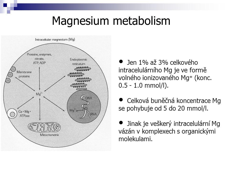 Magnesium metabolism Jen 1% až 3% celkového intracelulárního Mg je ve formě volného ionizovaného Mg + (konc. 0.5 - 1.0 mmol/l). Celková buněčná koncen