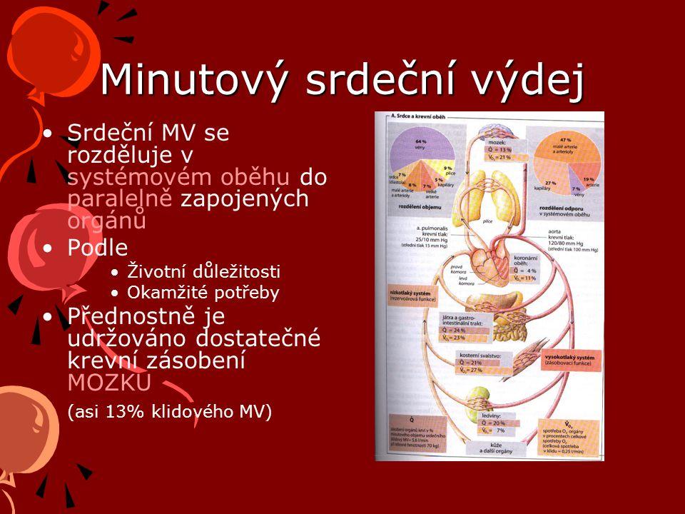 Minutový srdeční výdej Srdeční MV se rozděluje v systémovém oběhu do paralelně zapojených orgánů Podle Životní důležitosti Okamžité potřeby Přednostně je udržováno dostatečné krevní zásobení MOZKU (asi 13% klidového MV)