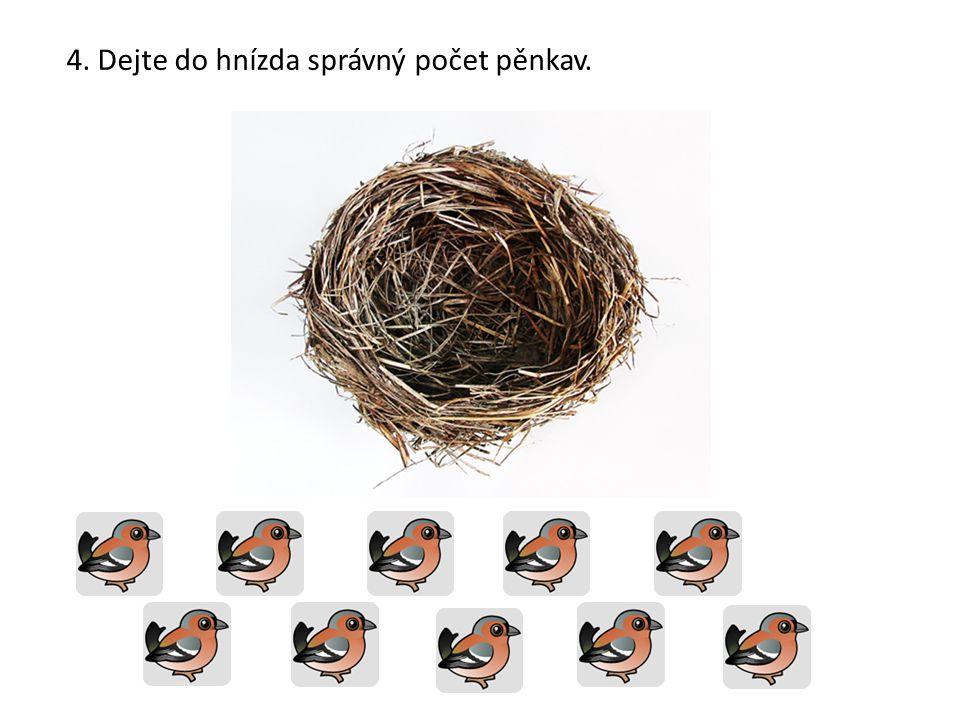 4. Dejte do hnízda správný počet pěnkav.