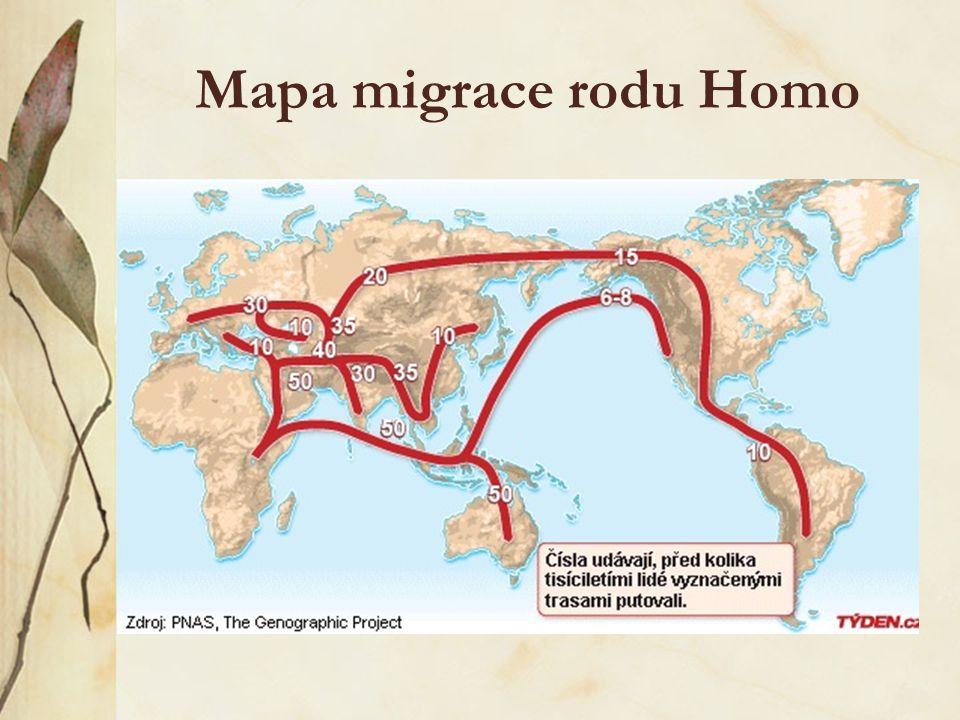 """""""Ven z Afriky"""" podle této teorie se člověk před 60 000 lety rozšířil v několika na sobě nezávislých skupinách do Evropy a Asie, kde nahradil Homo nean"""