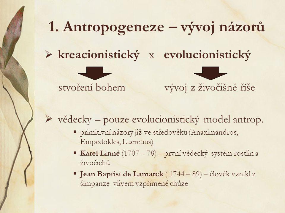 """7.Teorie rozšíření  uznávaná teorie """"Ven z Afriky :  Homo s."""