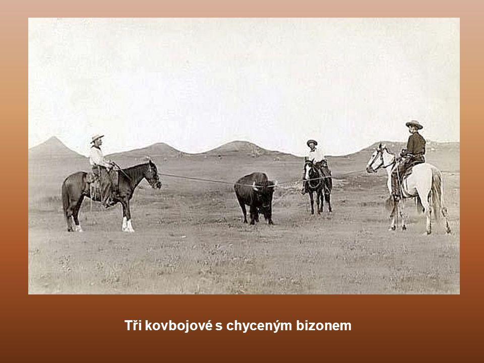 Bojovník Bullchief. Obrázek představuje indiána, překonávajícího mělké peřeje.