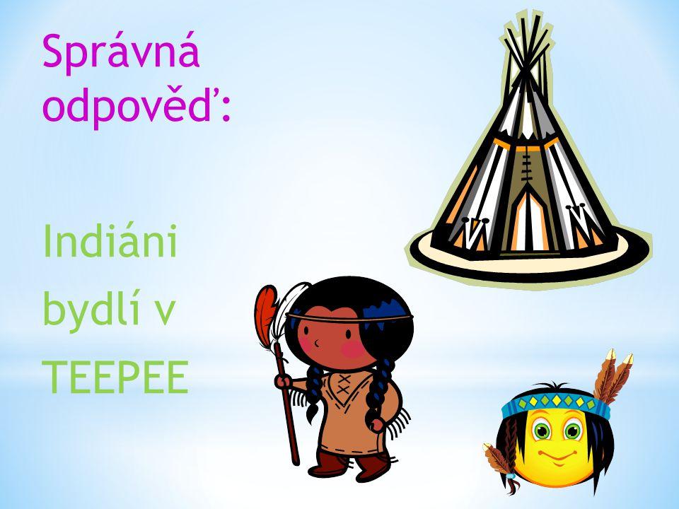 Správná odpověď: Indiáni bydlí v TEEPEE