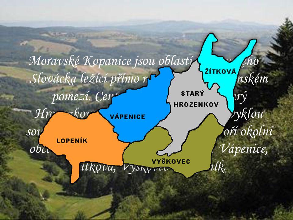 Moravské Kopanice jsou oblastí Moravského Slovácka ležící přímo na moravsko-slovenském pomezí. Centrální obcí oblasti je Starý Hrozenkov, tato obec má