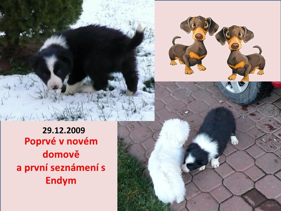3.12.2009 10.12.2009 19.12.2009