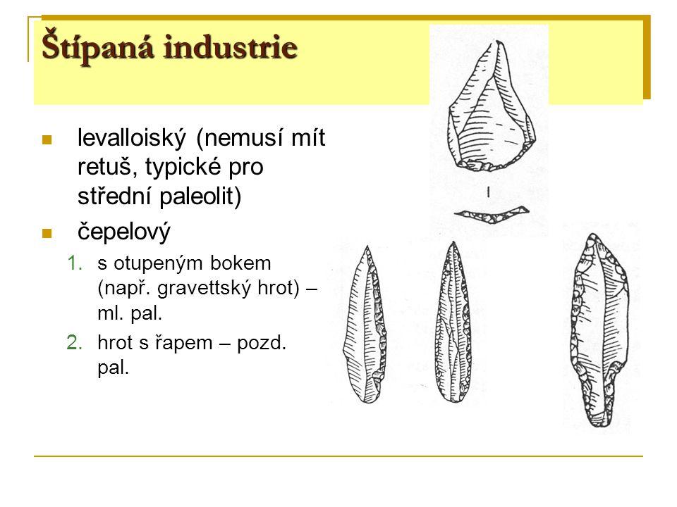 levalloiský (nemusí mít retuš, typické pro střední paleolit) čepelový 1.s otupeným bokem (např.