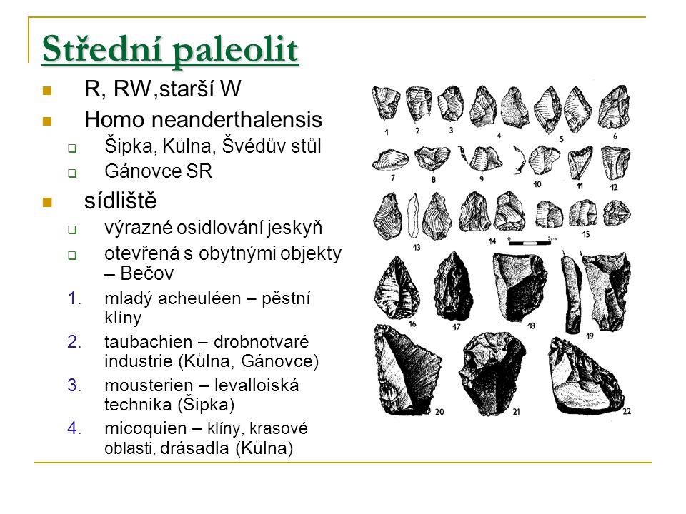 Střední paleolit R, RW,starší W Homo neanderthalensis  Šipka, Kůlna, Švédův stůl  Gánovce SR sídliště  výrazné osidlování jeskyň  otevřená s obytnými objekty – Bečov 1.mladý acheuléen – pěstní klíny 2.taubachien – drobnotvaré industrie (Kůlna, Gánovce) 3.mousterien – levalloiská technika (Šipka) 4.micoquien – klíny, krasové oblasti, drásadla (Kůlna)