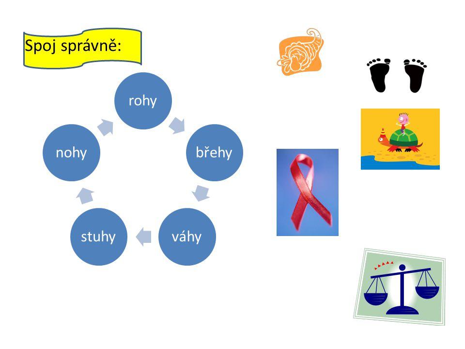 Spoj správně: rohybřehyváhystuhynohy