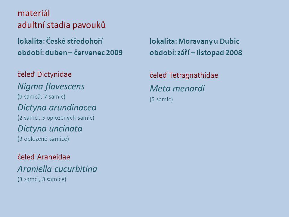 materiál adultní stadia pavouků lokalita: České středohoří období: duben – červenec 2009 čeleď Dictynidae Nigma flavescens (9 samců, 7 samic) Dictyna arundinacea (2 samci, 5 oplozených samic) Dictyna uncinata (3 oplozené samice) čeleď Araneidae Araniella cucurbitina (3 samci, 3 samice) lokalita: Moravany u Dubic období: září – listopad 2008 čeleď Tetragnathidae Meta menardi (5 samic)