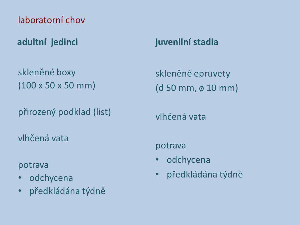 laboratorní chov adultní jedinci skleněné boxy (100 x 50 x 50 mm) přirozený podklad (list) vlhčená vata potrava odchycena předkládána týdně juvenilní stadia skleněné epruvety (d 50 mm, ø 10 mm) vlhčená vata potrava odchycena předkládána týdně