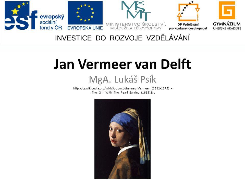 Jan Vermeer van Delft MgA.
