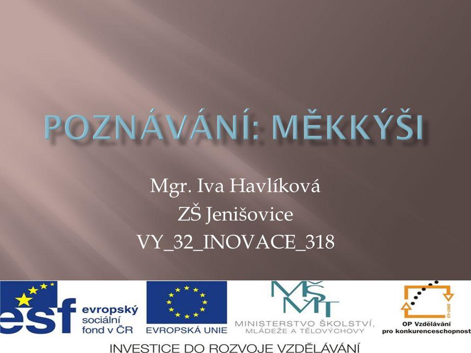 Mgr. Iva Havlíková ZŠ Jenišovice VY_32_INOVACE_318