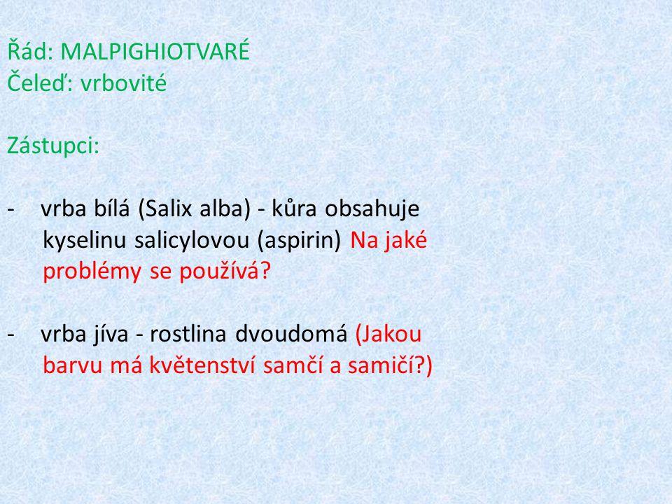 Řád: MALPIGHIOTVARÉ Čeleď: vrbovité Zástupci: -vrba bílá (Salix alba) - kůra obsahuje kyselinu salicylovou (aspirin) Na jaké problémy se používá? -vrb