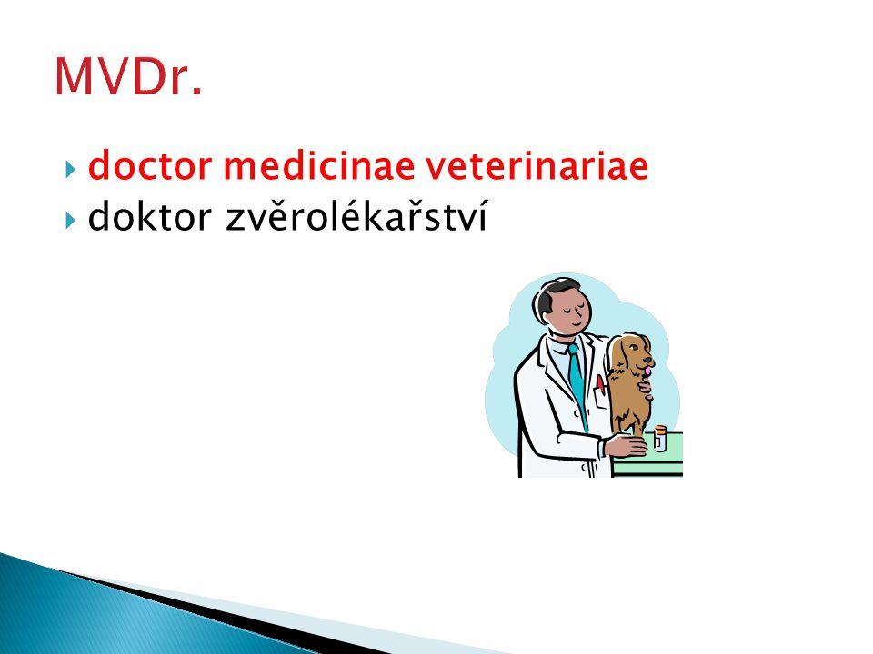  doctor medicinae veterinariae  doktor zvěrolékařství
