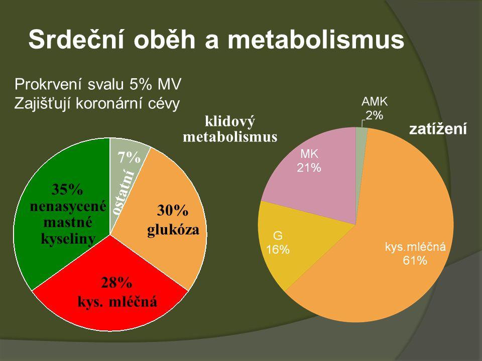 Srdeční oběh a metabolismus Prokrvení svalu 5% MV Zajišťují koronární cévy 28% kys. mléčná 30% glukóza 35% nenasycené mastné kyseliny 7% ostatní klido