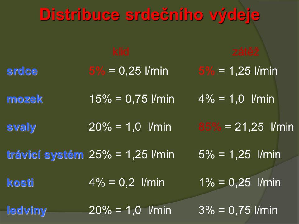 Distribuce srdečního výdeje srdce srdce5% = 0,25 l/min5% = 1,25 l/min mozek mozek15% = 0,75 l/min4% = 1,0 l/min svaly svaly20% = 1,0 l/min85% = 21,25