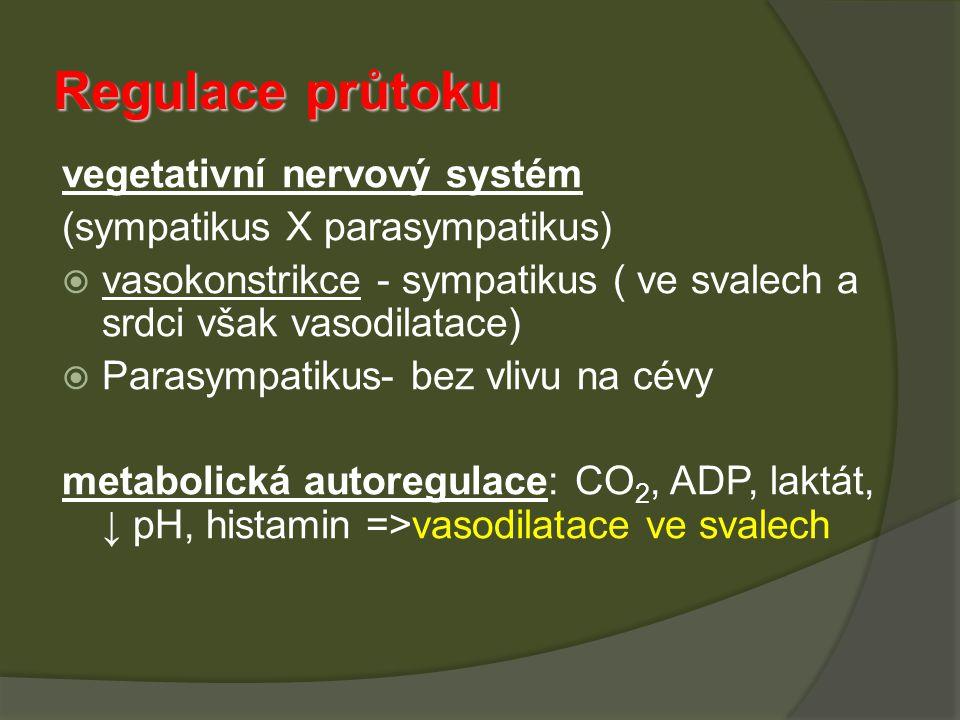 Regulace průtoku vegetativní nervový systém (sympatikus X parasympatikus)  vasokonstrikce - sympatikus ( ve svalech a srdci však vasodilatace)  Para