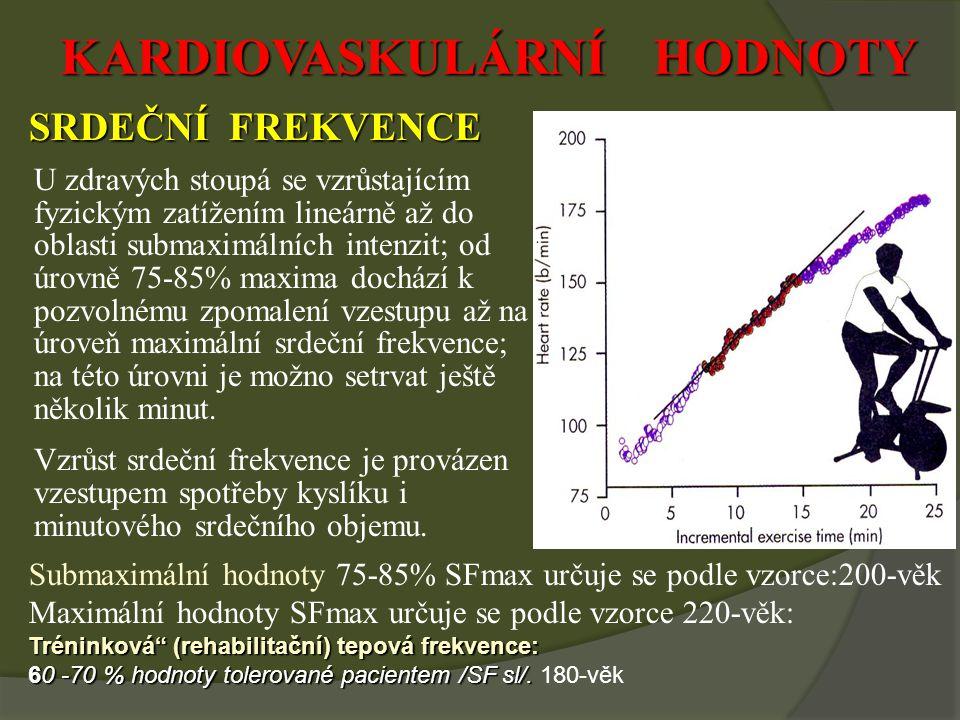 KARDIOVASKULÁRNÍ HODNOTY SRDEČNÍ FREKVENCE U zdravých stoupá se vzrůstajícím fyzickým zatížením lineárně až do oblasti submaximálních intenzit; od úrovně 75-85% maxima dochází k pozvolnému zpomalení vzestupu až na úroveň maximální srdeční frekvence; na této úrovni je možno setrvat ještě několik minut.