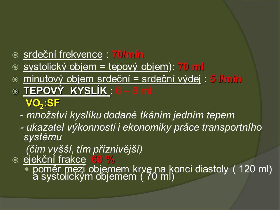 70/min  srdeční frekvence : 70/min 70 ml  systolický objem = tepový objem): 70 ml 5 l/min  minutový objem srdeční = srdeční výdej : 5 l/min  TEPOVÝ KYSLÍK  TEPOVÝ KYSLÍK : 6 – 8 ml VO 2 :SF VO 2 :SF - množství kyslíku dodané tkáním jedním tepem - ukazatel výkonnosti i ekonomiky práce transportního systému (čim vyšší, tím příznivější) 60 %  ejekční frakce 60 % poměr mezi objemem krve na konci diastoly ( 120 ml) a systolickým objemem ( 70 ml)