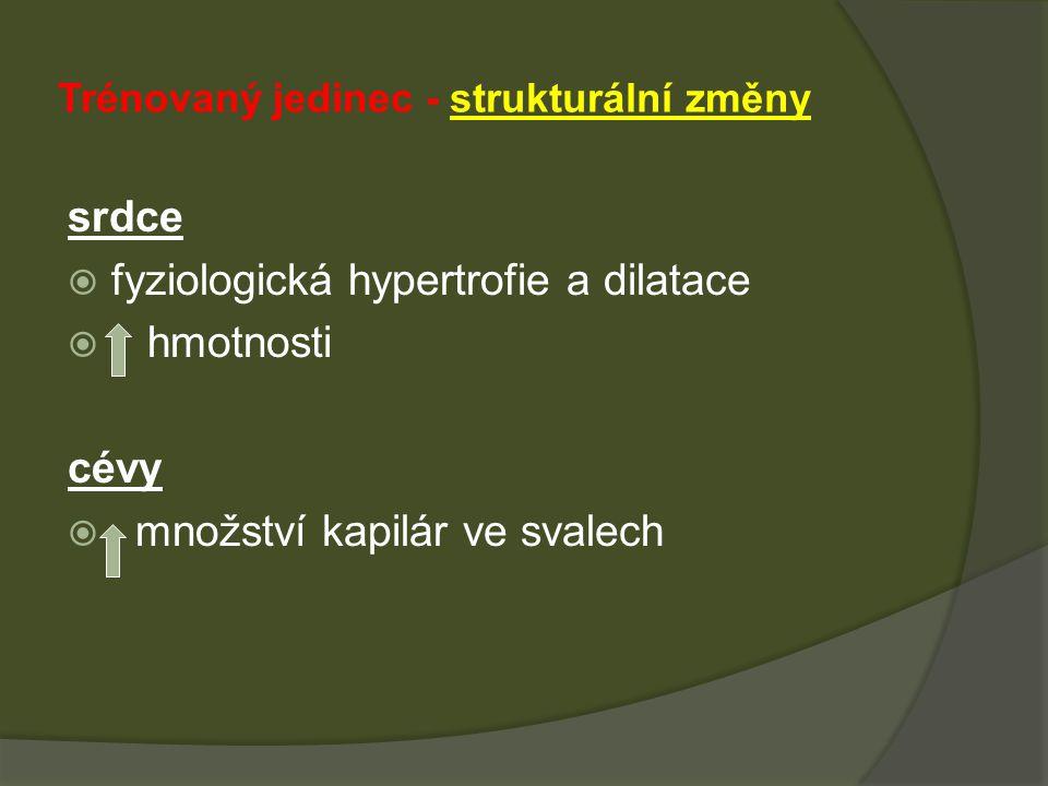 Trénovaný jedinec - strukturální změny srdce  fyziologická hypertrofie a dilatace  hmotnosti cévy  množství kapilár ve svalech