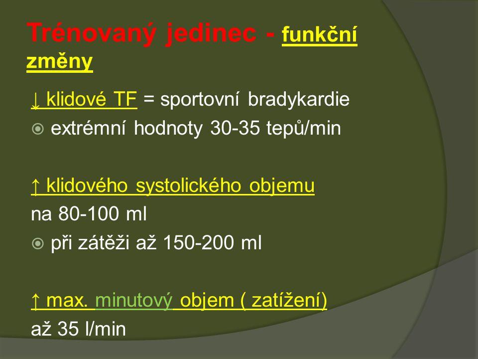 ↓ klidové TF = sportovní bradykardie  extrémní hodnoty 30-35 tepů/min ↑ klidového systolického objemu na 80-100 ml  při zátěži až 150-200 ml ↑ max.