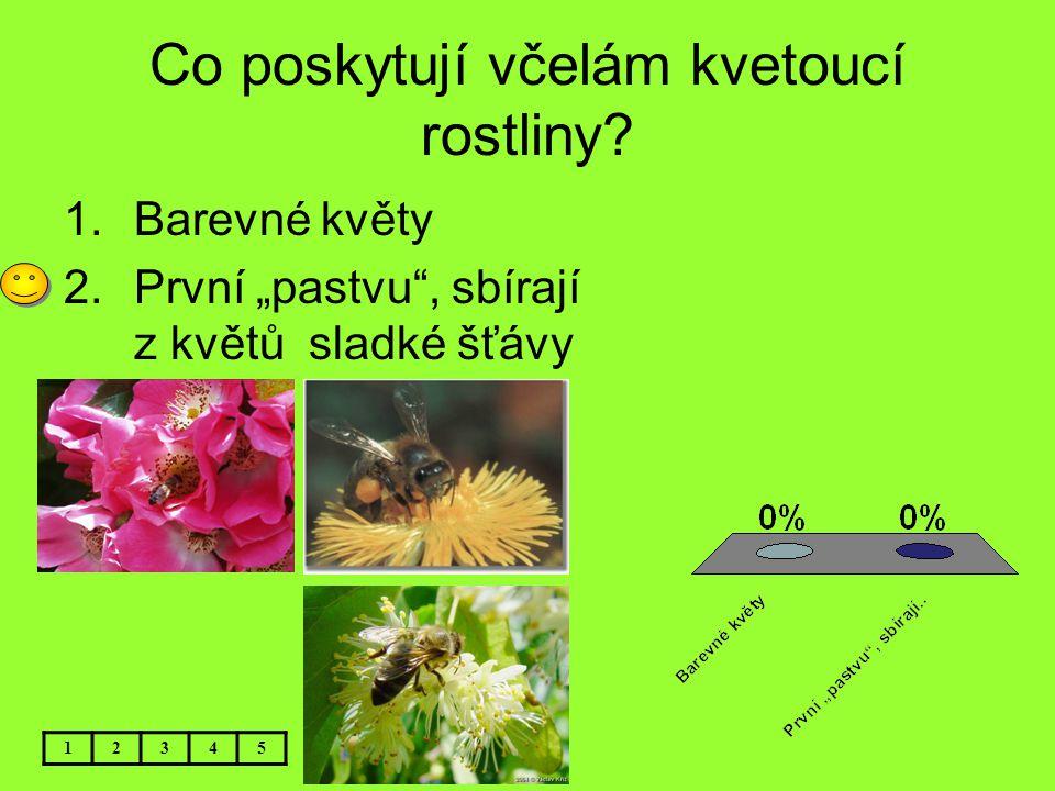 """Co poskytují včelám kvetoucí rostliny? 1.Barevné květy 2.První """"pastvu"""", sbírají z květů sladké šťávy 12345"""