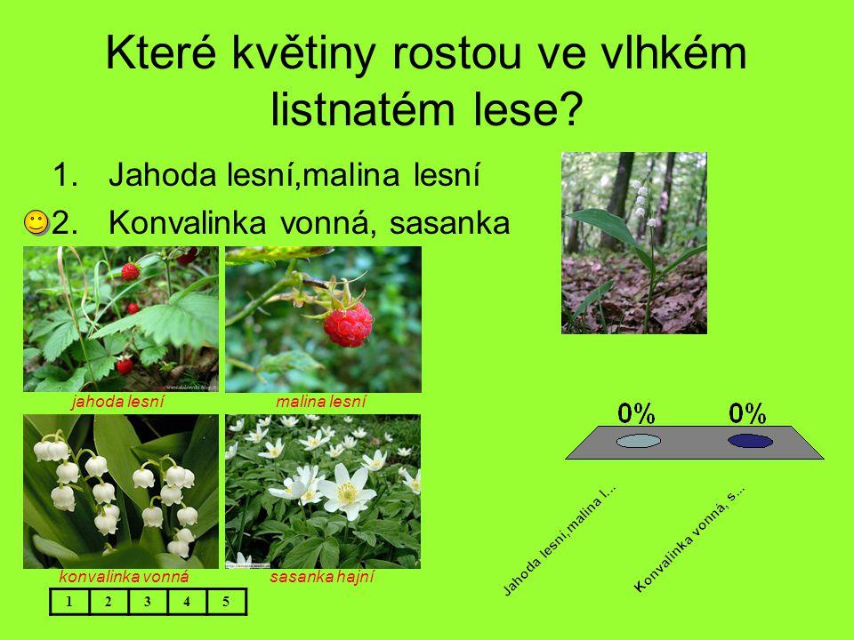 Které květiny rostou ve vlhkém listnatém lese? 12345 1.Jahoda lesní,malina lesní 2.Konvalinka vonná, sasanka jahoda lesní malina lesní konvalinka vonn