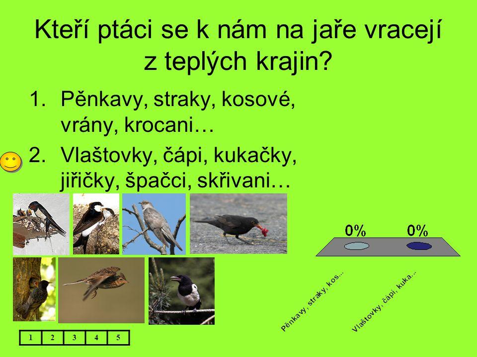 Kteří ptáci se k nám na jaře vracejí z teplých krajin? 1.Pěnkavy, straky, kosové, vrány, krocani… 2.Vlaštovky, čápi, kukačky, jiřičky, špačci, skřivan