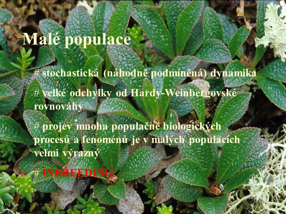 Malé populace # stochastická (náhodně podmíněná) dynamika # velké odchylky od Hardy-Weinbergovské rovnováhy # projev mnoha populačně biologických proc