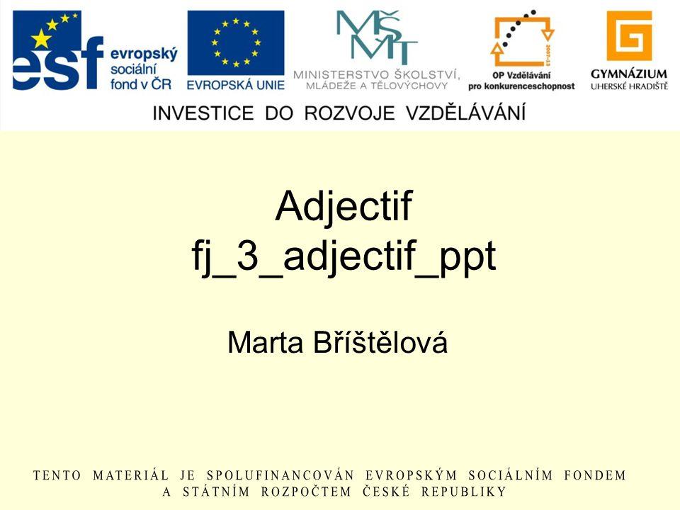Adjectif fj_3_adjectif_ppt Marta Bříštělová