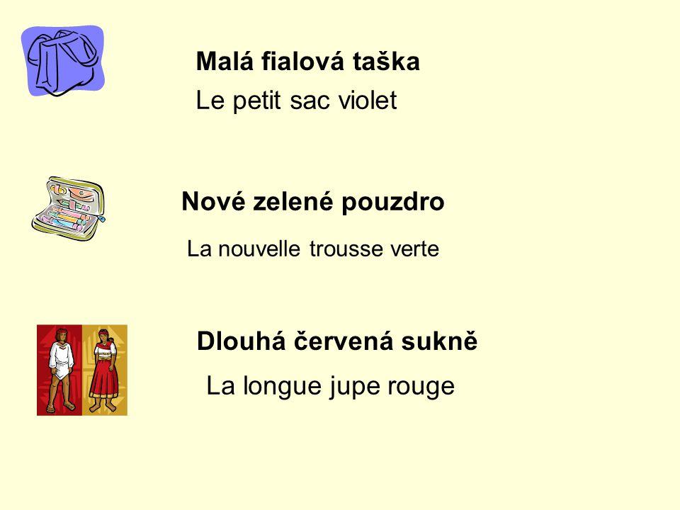 Malá fialová taška Le petit sac violet Nové zelené pouzdro La nouvelle trousse verte Dlouhá červená sukně La longue jupe rouge