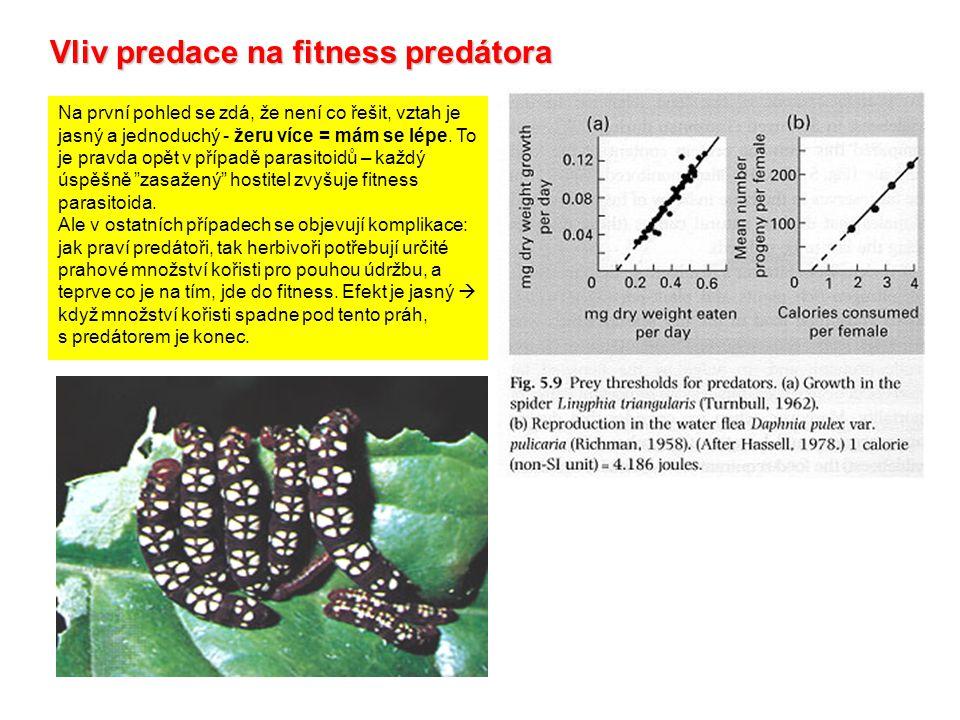Vliv predace na fitness predátora Na první pohled se zdá, že není co řešit, vztah je jasný a jednoduchý - žeru více = mám se lépe. To je pravda opět v