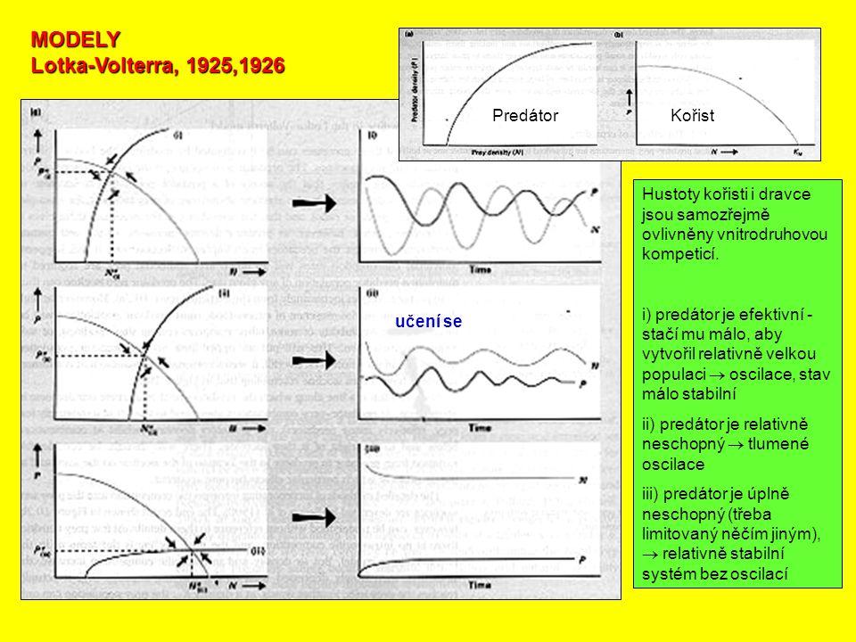 MODELY Lotka-Volterra, 1925,1926 Hustoty kořisti i dravce jsou samozřejmě ovlivněny vnitrodruhovou kompeticí. i) predátor je efektivní - stačí mu málo