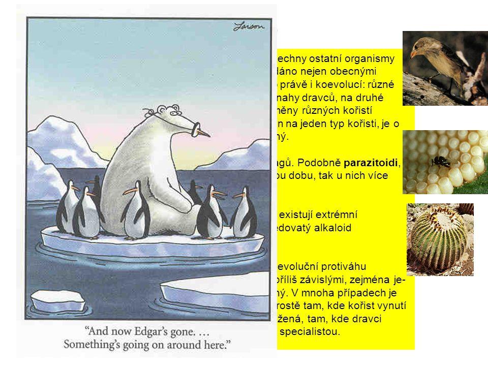Je jasné, že jeden dravec není schopen využívat všechny ostatní organismy jako kořist (neexistuje universální dravec) - je to dáno nejen obecnými vlastnostmi a možnostmi organismů, ale posilováno právě i koevolucí: různé kořistě (v evolučním měřítku) různě odpovídají na snahy dravců, na druhé straně však dravec není schopen pokrýt všechny změny různých kořistí současně - musí se specializovat.