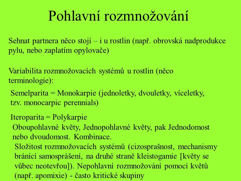 Pohlavní rozmnožování Semelparita = Monokarpie (jednoletky, dvouletky, víceletky, tzv. monocarpic perennials) Iteroparita = Polykarpie Oboupohlavné kv