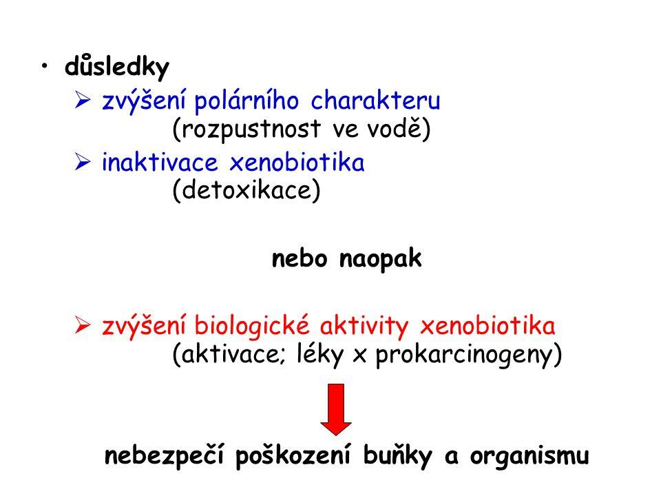 důsledky  zvýšení polárního charakteru (rozpustnost ve vodě)  inaktivace xenobiotika (detoxikace) nebo naopak  zvýšení biologické aktivity xenobiot