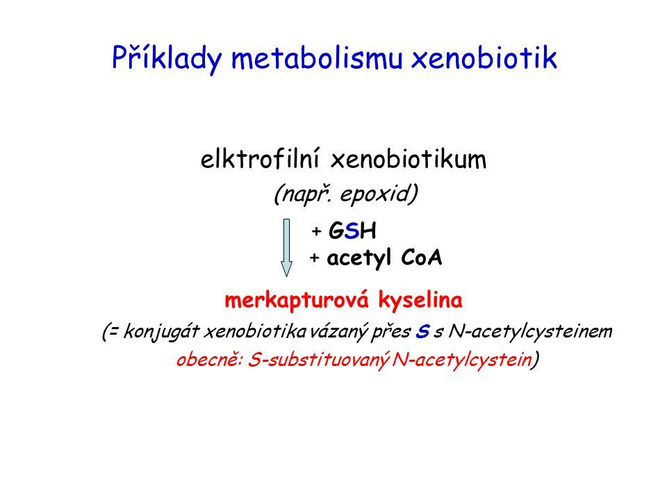 Příklady metabolismu xenobiotik elktrofilní xenobiotikum (např. epoxid) + GSH + acetyl CoA merkapturová kyselina (= konjugát xenobiotika vázaný přes S