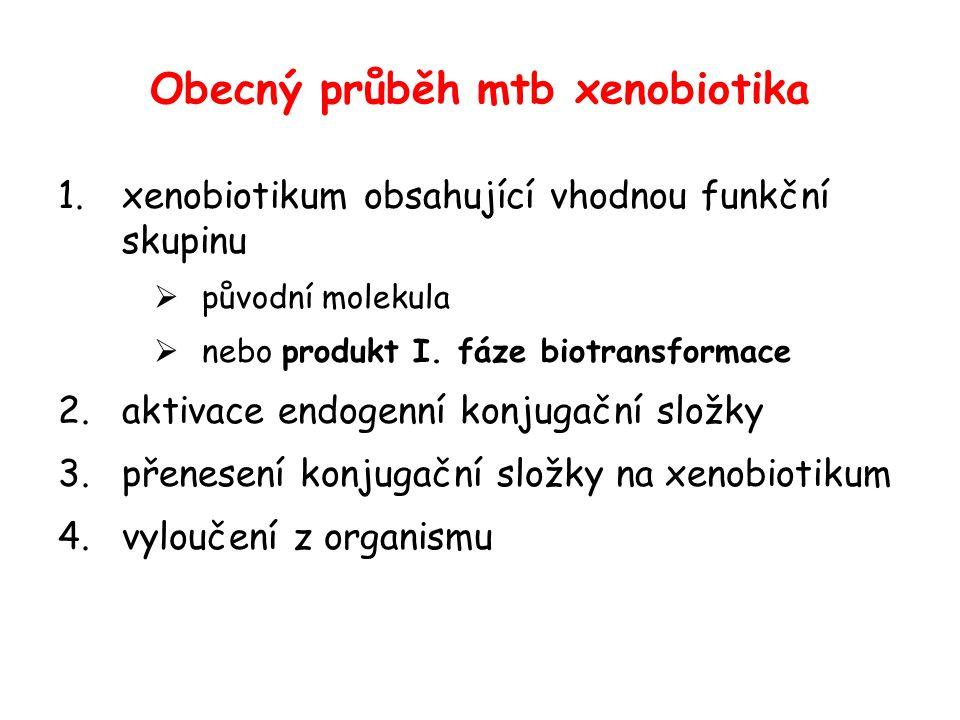 Obecný průběh mtb xenobiotika 1.xenobiotikum obsahující vhodnou funkční skupinu  původní molekula  nebo produkt I. fáze biotransformace 2.aktivace e
