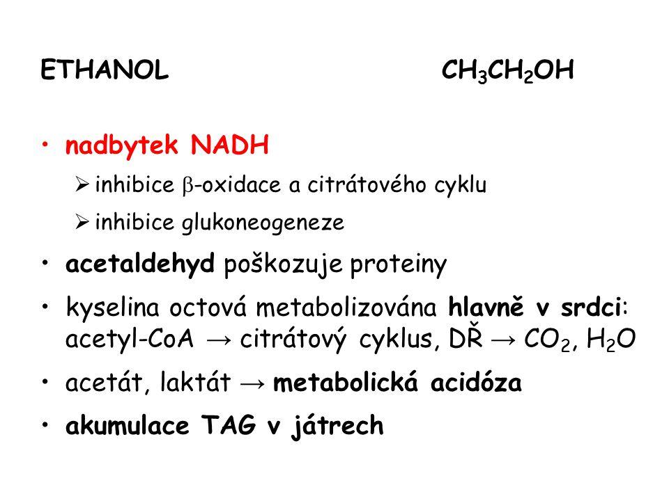 ETHANOLCH 3 CH 2 OH nadbytek NADH  inhibice  -oxidace a citrátového cyklu  inhibice glukoneogeneze acetaldehyd poškozuje proteiny kyselina octová m