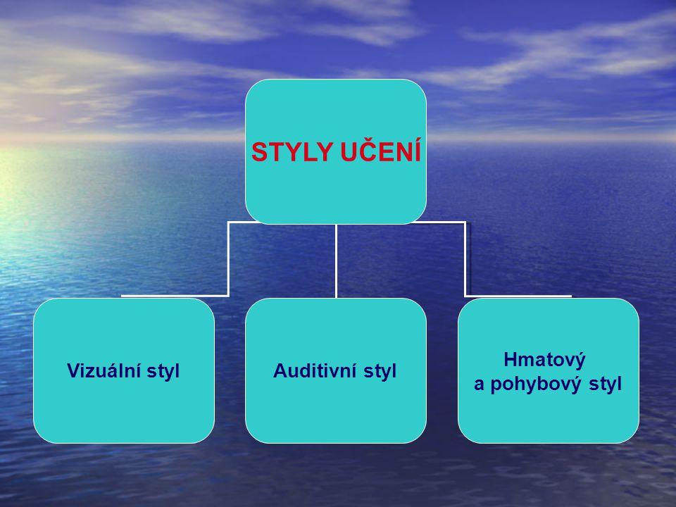 STYLY UČENÍ Vizuální stylAuditivní styl Hmatový a pohybový styl